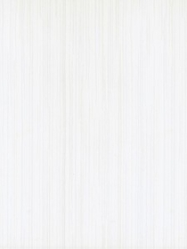 Stokrotka Bianco 25x33