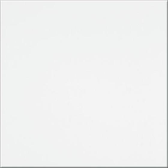 PSM Inwencja Biała I1 20x20