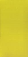 Irvan Verde 29,5x59,5
