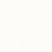 Gamma Bianco Połysk 19,8x19,8