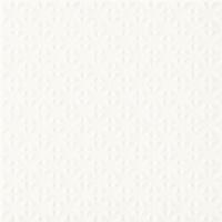 Gammo Biały Struktura 19,8x19,8