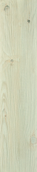 Thorno Bianco Mat 21,5x98,5