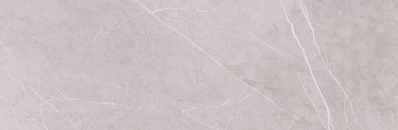 Light Marquina Grey 24x74
