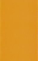 Diantus Orange 25x40