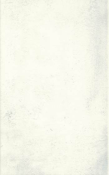 Muro Bianco 25x40