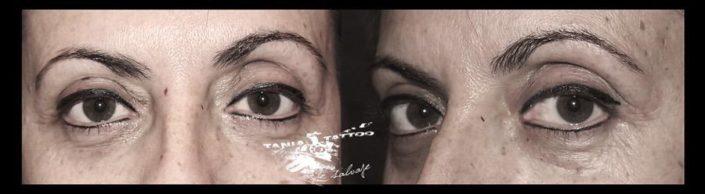Micropigmentacion de Cejas Tattoo Valencia
