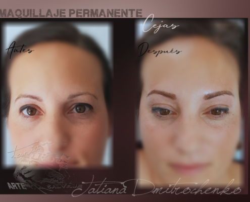 micropigmentacion de las cejas pelo a pelo microblading valencia (1)