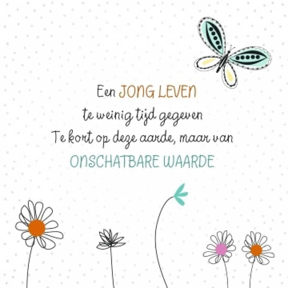 Lewis Van Der Auwera Op Till Always