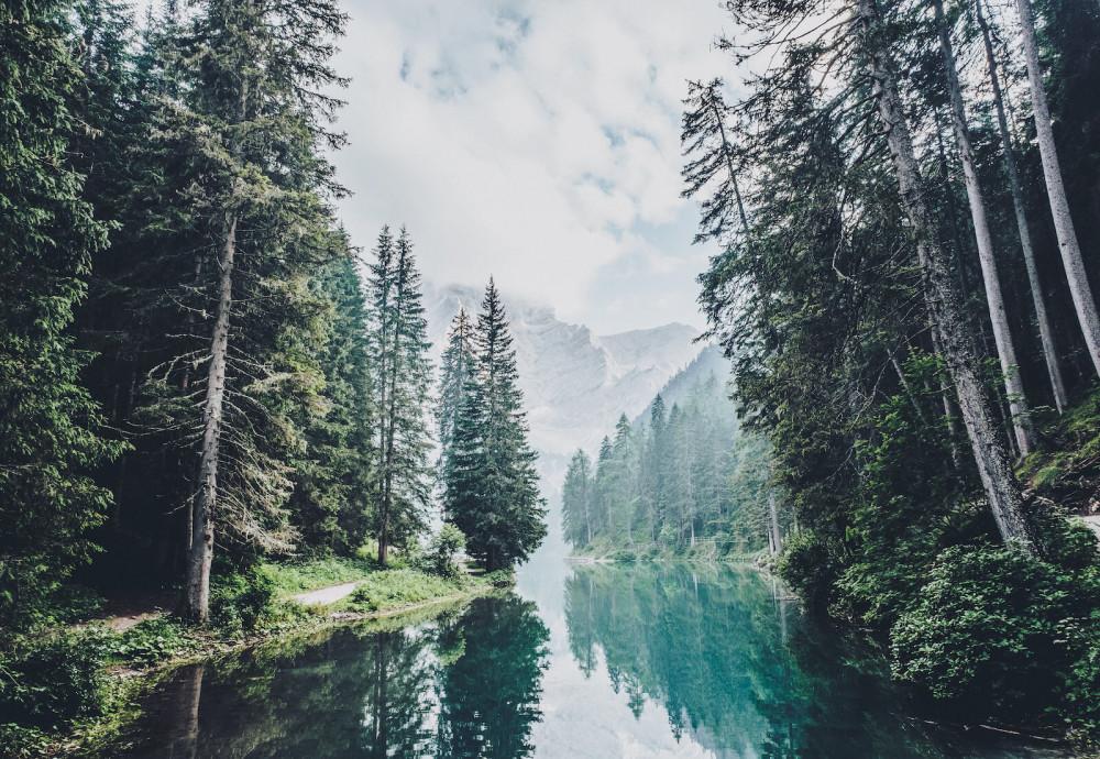 #traingreen: trainieren und Bäume pflanzen