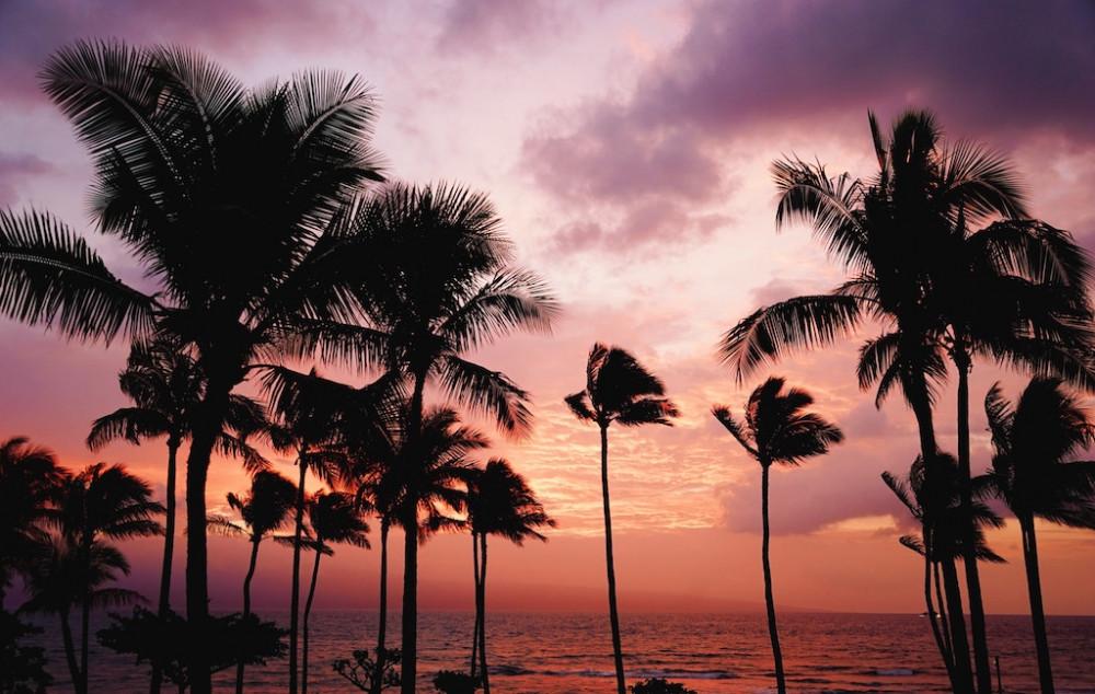 Unterwegs zum IRONMAN Hawaii - Neuzugang Markus Stöhr stellt sich vor