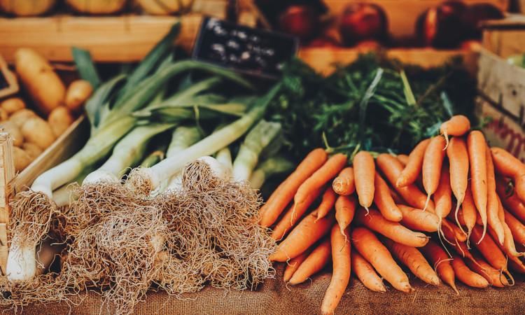 Grundlagentraining Ernährung