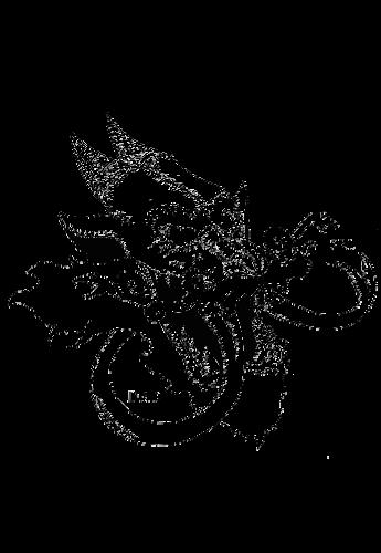 maglietta personalizzate drago