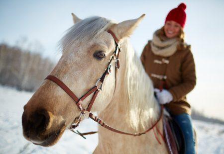Sicile à cheval