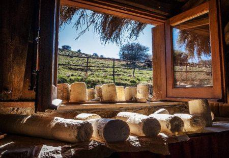 Séjour Oenogastronomique en Sicile - Dégustation de Fromage à la ferme