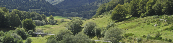 Pédalez en Auvergne - réf 062