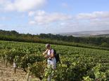 Séjour groupe randonnée dans la vallée de l'Yonne - réf 058