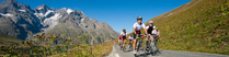 Voyage sous le soleil des Alpes du sud - réf : 002