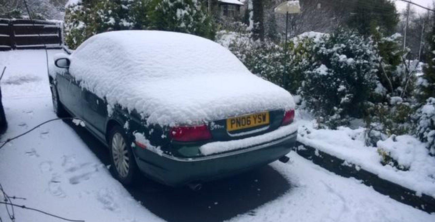 Jec Snow2