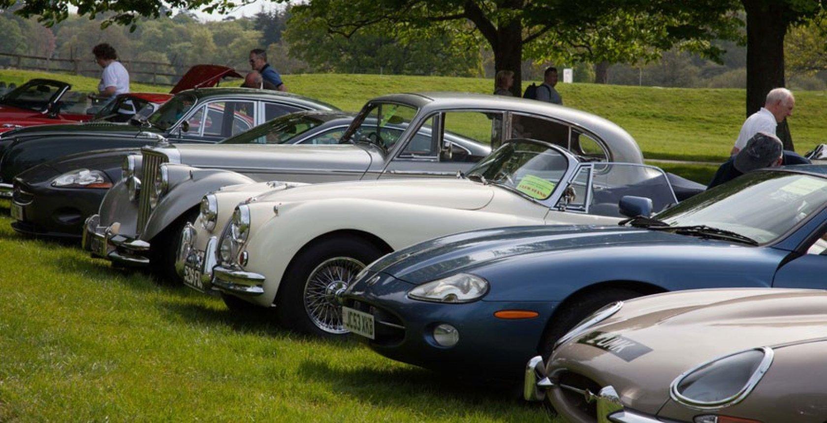 Simply Jaguar 1