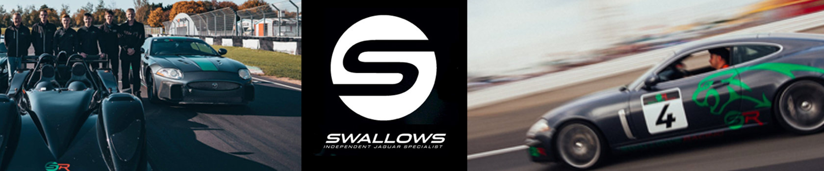 Swallows Event Header
