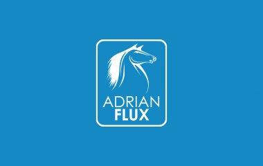 Adrian Insurer