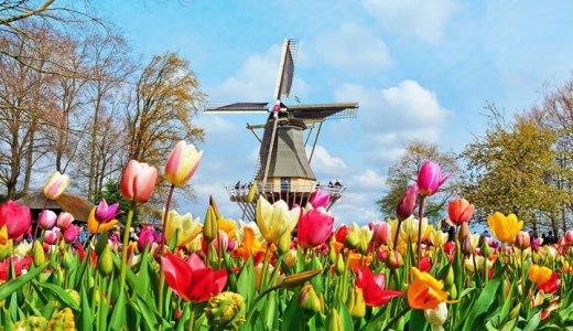S1 Sh 416314375 Keukenhof Holland Netherlands 720X432