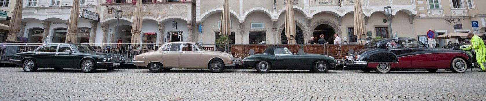 Jaguar 0238