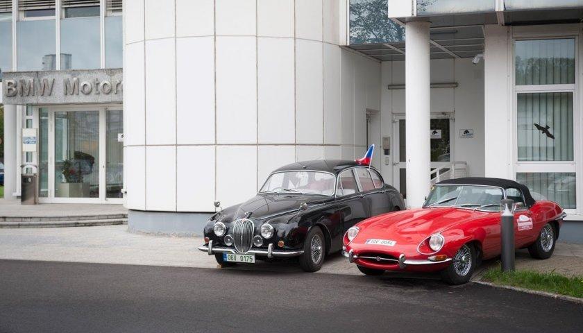 Jaguar 0289