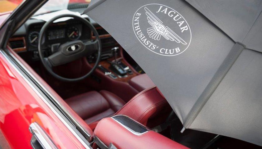 Jaguar 0750