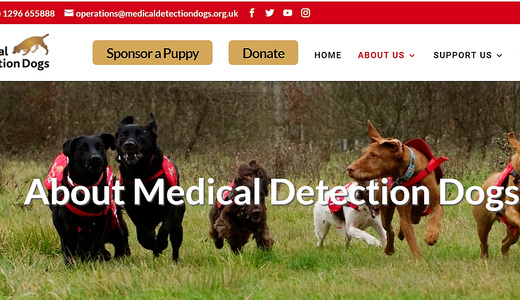Madical Detection Dogs 2