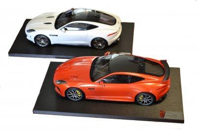 F Type Model Both