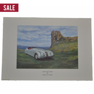 Sale Jaguar Collection Sharon Costain