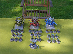 Spiderfang Venom Mob (1 of 8)