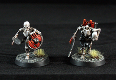 Skeleton Warriors Tests