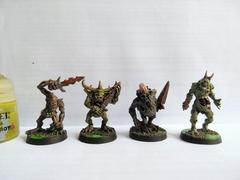 Plaguebearers through the ages