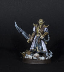 masked guard Slaaneshi elves