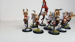 First Squad of Witch Aelves - Overview 3