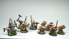 marl-xarks-revoluthing-army-10-warband.jpg