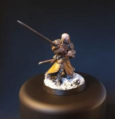 Freeguild general