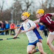 Fitzgibbon cup mary i v nuig colm galvin