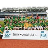 Croke 20park 20group 20picture