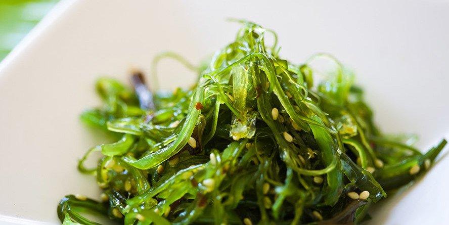 Seaweed copy