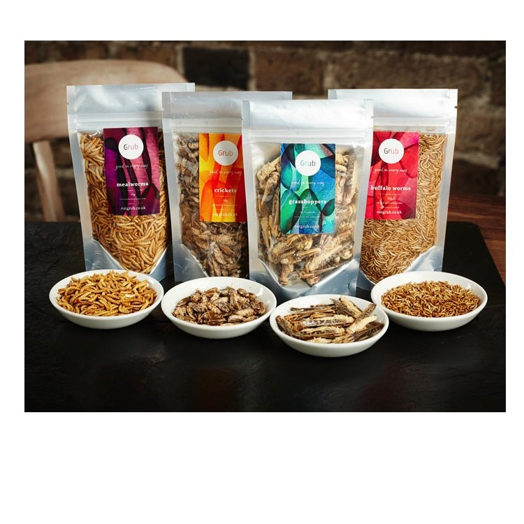 Edible Organic Insects Healthy Gift Set