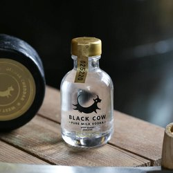Pure Milk Vodka Miniature 40% ABV 5cl by Black Cow Vodka