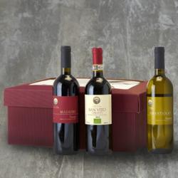 Tuscan Organic Wine Hamper by Tenuta San Vito Inc. Chianti, Chardonnay & Toscana Wines