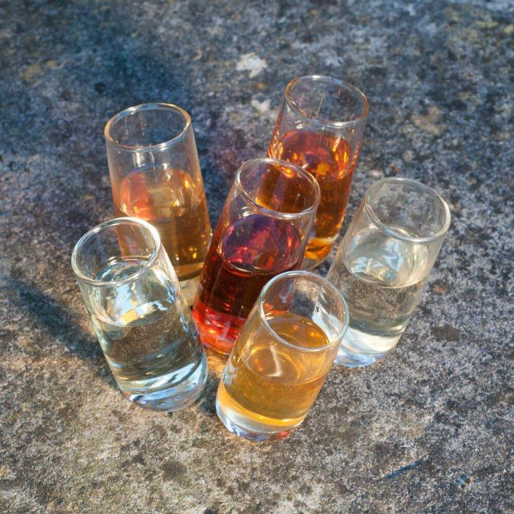 6 Leaning Shot Glasses Gift Set by Tipsy White
