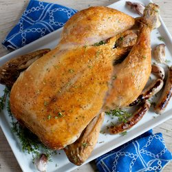 2.5-3.5kg Whole Chicken by Copas with Timer, Instructions & Recipes (Free Range, Game Hung)