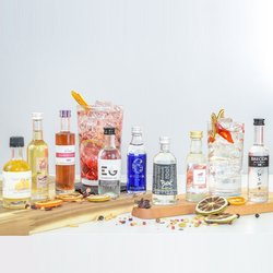 Premium Craft Gin & Fruit Liqueur Tasting Gift Set