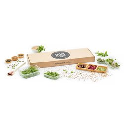 Fresh Mini Microherbs & Microgreens Variety Box 150g