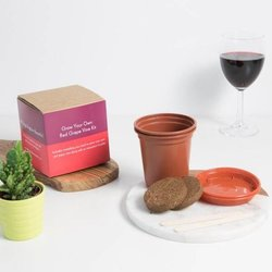 Grow Your Own Red Wine Grape Vine Gift